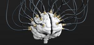 exorfinen versus endorfinen